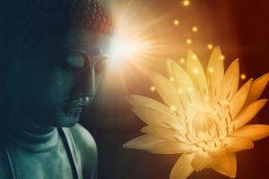 Emotional Freedom Alchemy